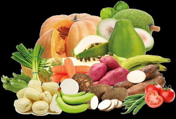 verduras de costa rica